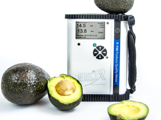 Non-destructive Measurements of Dry Matter in Avocado