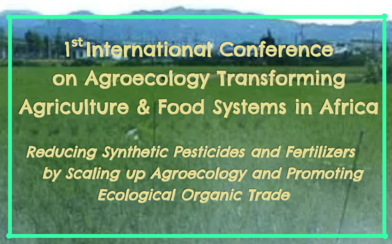 1st International Conference on Agroeology Transforming Agriculture & Food Systems in Africa