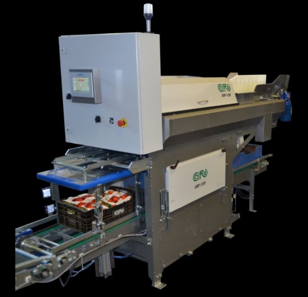 GBF 100, new net bag box filler system